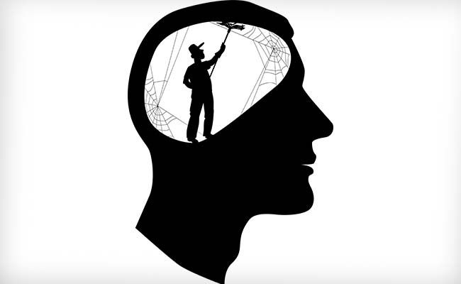 excessive-Fructose weight loss plan Can harm mind Genes: have a look at